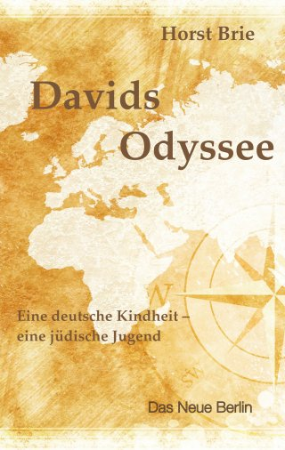 Davids Odyssee